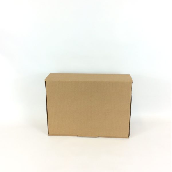 Large 350x250x100mm Brown Mailing Box