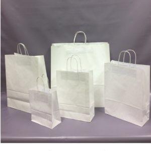 White Paper Twist Handle Bag